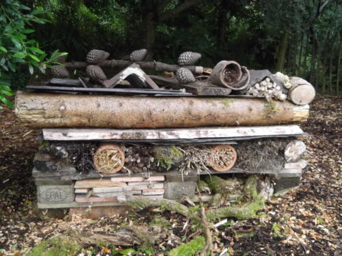 'Insect Hotel'