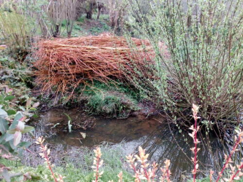 Large willow nest from the 'Nesting Instinct' exhibition